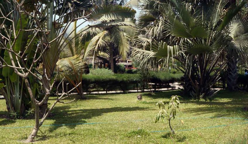 holiday beach club gambia banjul 1488 65024 62637 1920x730