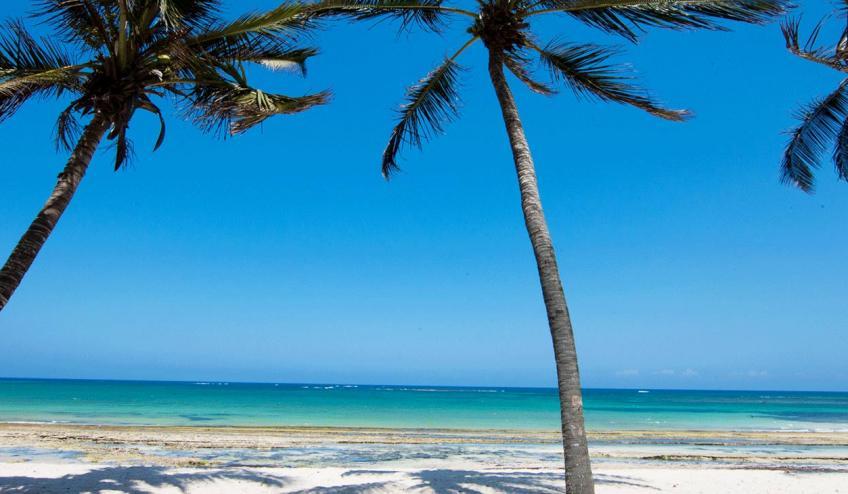 jacaranda indian ocean beach resort kenia diani beach 175 57338 48589 1920x730
