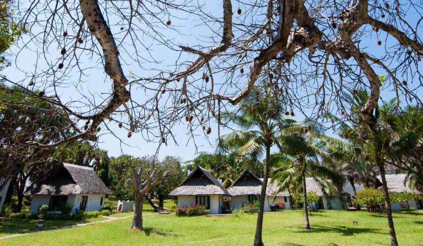 jacaranda indian ocean beach resort kenia diani beach 175 57366 48645 1920x730