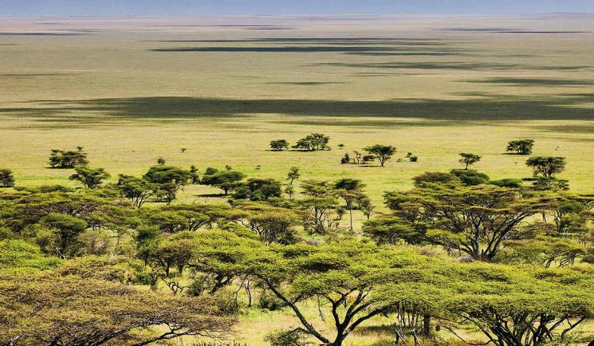 kenia i tanzania b 196 67135 67337 1920x730