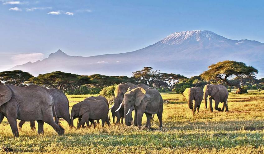 kenia tanzania i zanzibar safari z wypoczynkiem 266 67138 67343 1920x730