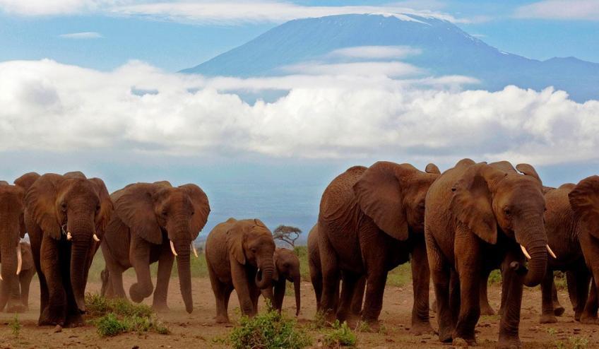 kenia tanzania i zanzibar safari z wypoczynkiem 266 103320 152467 1920x730