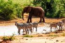 kenia tanzania i zanzibar safari z wypoczynkiem 266 103329 152485 1920x730