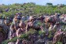 rpa botswana zimbabwe wyprawa do wodospadow wiktorii 875 103502 152873 1920x730