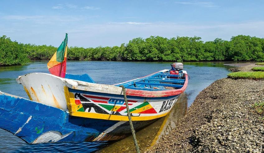 senegambia spacer z lwami de luxe 4559 107786 162491 1920x730
