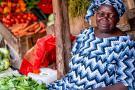 senegambia spacer z lwami de luxe 4559 122964 264791 1920x730
