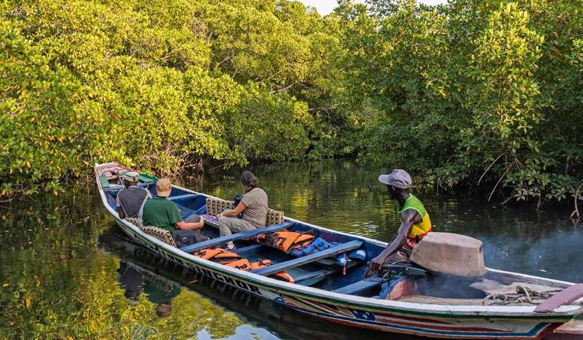 senegambia spacer z lwami de luxe 4559 122960 264779 1920x730