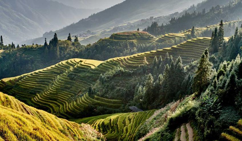 wietnam i chiny przyczajony tygrys ukryty smok 1188 131804 295079 1920x730