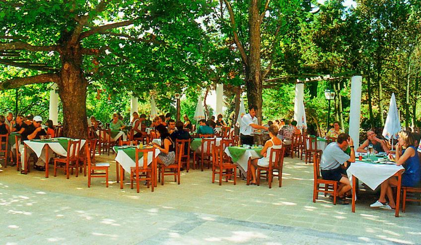 BGVKALIAKR GLSN Restaurant