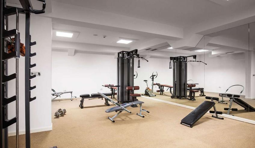 METVILEOLI PETR Gym